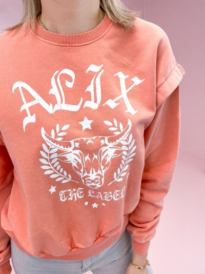 University sweater salmon